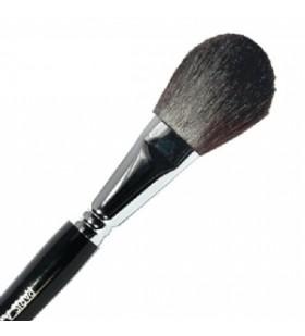 Pensula Blush